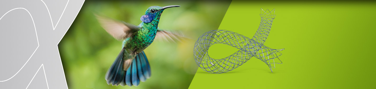 Accero Stent of Acandis GmbH Pforzheim on green background with hummingbird